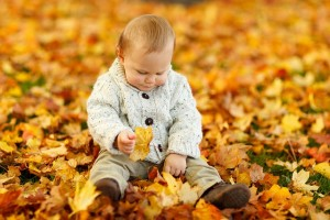 baby in leaves_pixabay
