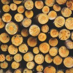 wood-791402_1280 (2)